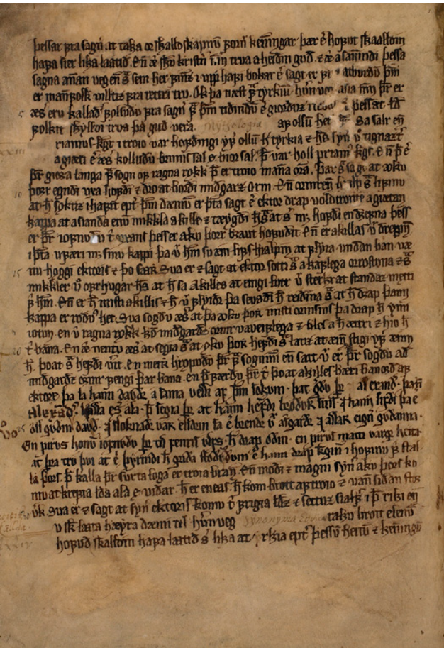 Wormianus page 44